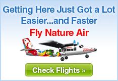 nature-air